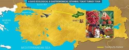 6 DAY ECOLOGICAL - GASTRONOMICAL ISTANBUL TOKAT TURKEY TOUR